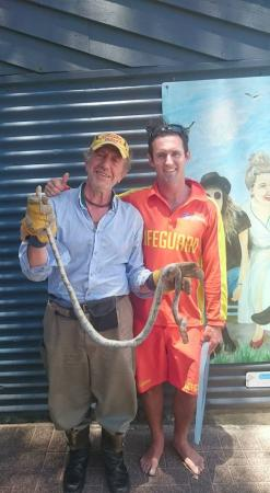 sea snake surf rescue